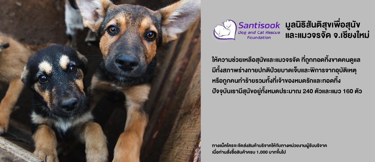 มูลนิธิสันติสุขเพื่อสุนัขและแมวจรจัด